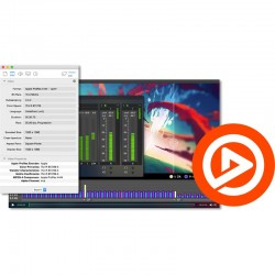 Telestream Switch 4 Pro Multiformat Video Player with Inspection and Correction - for Mac